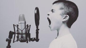 audio para entrevistas